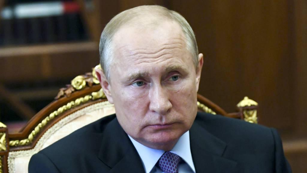 Roman Putin will gegen Korruption kämpfen