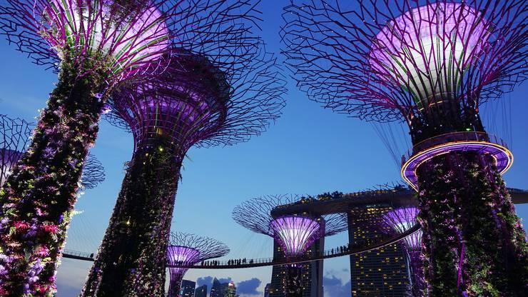 Platz 5: Los Angeles - Singapur, 14'114 Kilometer, Flugzeit: 17 Stunden 55 Minuten, United Airlines