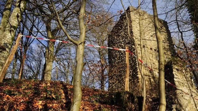 Die Ruine Alt Wülflingen in Winterthur muss saniert werden. Der Kanton Zürich beteiligt sich nun daran.