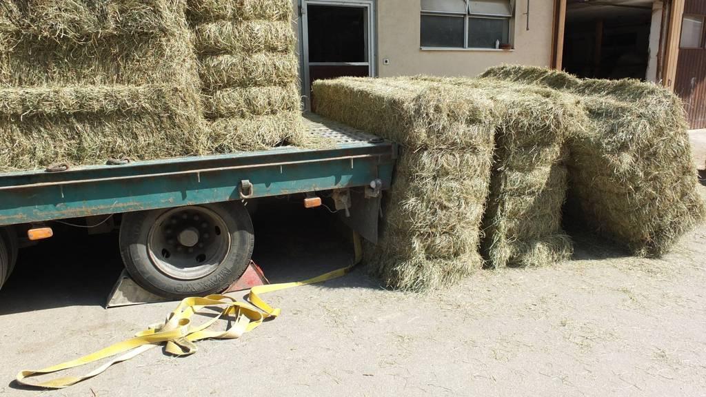 Ein Landwirt wurde beim Abladen von einem Heuballen überrollt.