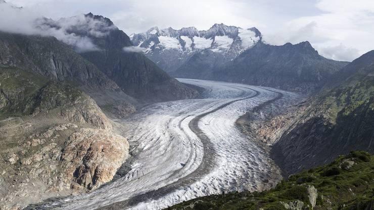 Blick auf den Aletschgletscher von der Moosfluh (Riederalp) aus.