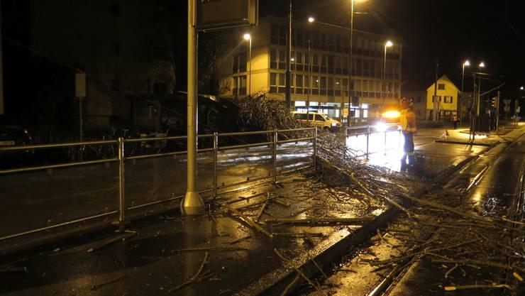 Umgestürzt war der Baum im Bereich Baslerstrasse/Gartenstrasse.