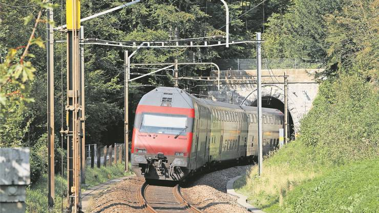 Der alte Tunnel Zimmerberg zwischen Horgen und Sihlbrugg ist ein Nadelöhr für den Zugverkehr auf der Linie Zürich–Luzern. Archivfoto: Sabine Rock