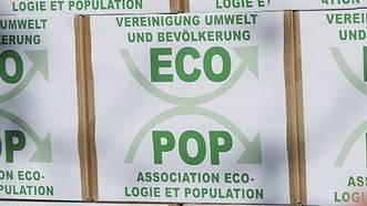 Vier Parteien aus dem Kanton Zürich gehen eine Wahlallianz mit dem Umweltverein Ecopop ein. (Symbolbild)