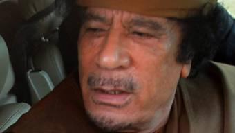 Muammar al-Gaddafi lässt die Muskeln spielen