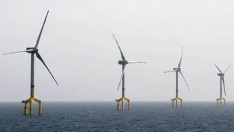 Windkraftwerke im Meer vor der Küste Deutschlands (Symbolbild)