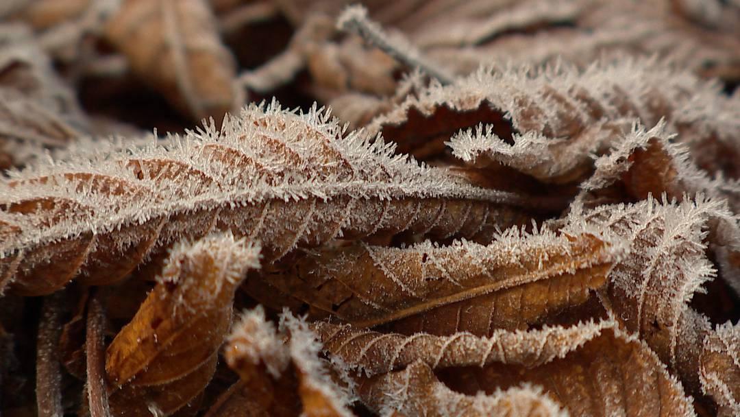 Frostiger Start: Verbreitet Minusgrade im Flachland