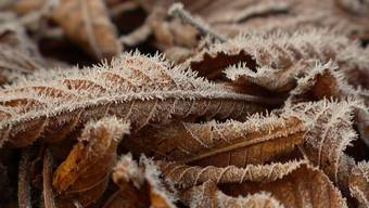 Zum ersten Mal in diesem Herbst wurden gemäss Meteonews im Flachland verbreitet Minustemperaturen gemessen. Dies sorgte vielerorts für eine frostige Morgenstimmung.