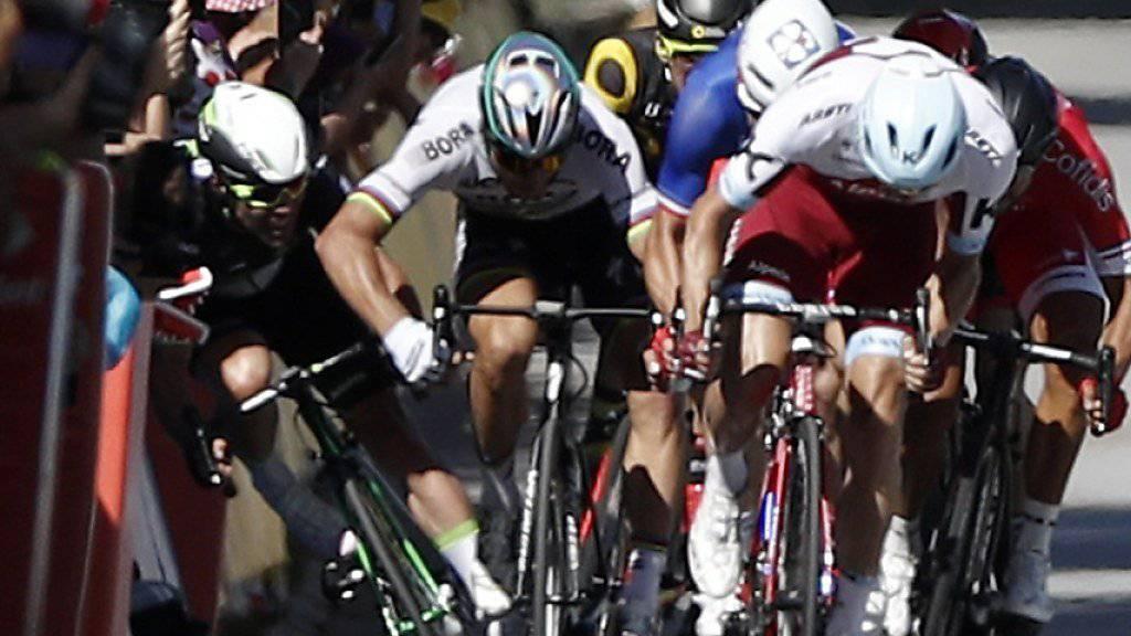 Peter Sagan (Zweiter von links) fährt auf der Zielgeraden den Ellbogen aus und Mark Cavendish (hinter ihm) kommt zu Fall