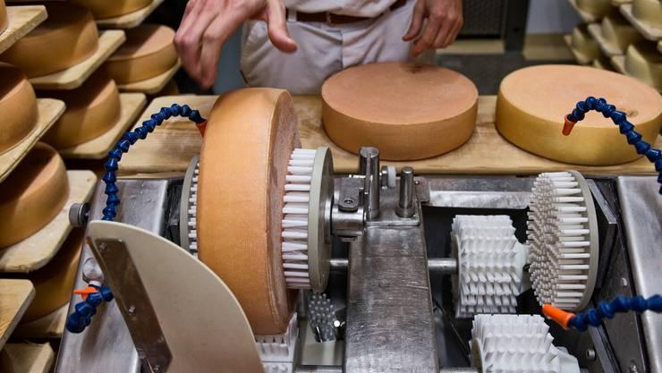 Käse-Produktion der Regio Molkerei beider Basel im Käsekeller. Während der Reife werden die Laibe gewendet, bestrichen und gebürstet.