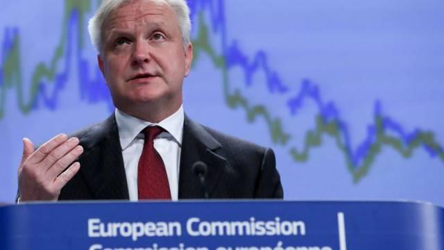 """Währungskommissar Rehn: """"Ein guter Tag für Europa"""" (Archiv)"""