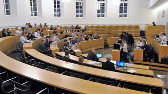 49 von 50 Aarauer Einwohnerräte waren anwesend, es fehlte weiterbildungsbedingt Alois Debrunner (SP).