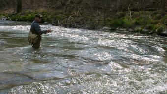 Fischen: Neben dem Recht, in ihrem Revier zu fischen, übernehmen Pächter auch Bewirtschaftungs- und Aufsichtspflichten. (Robert Burkhard )