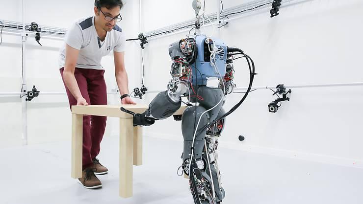 Wie muss man Roboter programmieren, damit sie mit Menschen gemeinsam Objekte tragen können? EPFL-Forschende sind dem nachgegangen.