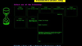 Auf der Webseite fasnachtsleaks.org veröffentlichen Anonyme geheime Cliquensujets der kommenden Fasnacht. (Archiv)