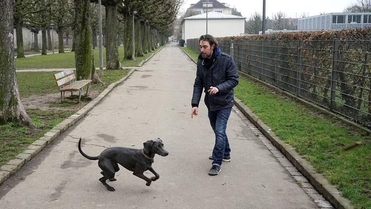 Die halbjährige Weimaraner-Hündin Bel und ihr Besitzer Vincent Pezet sind an diesem Morgen praktisch allein im «Hunde-Pärkli» am St. Galler-Ring im Gotthelfquartier.