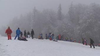Viele Leute gingen heute trotz schlechtem Wetter auf die Flachlandhügel: So zog es einige auf den Horben im Freiamt. Denn dort gab es gerade genügend Schnee, dass man schlitteln, Schneemänner bauen und herumtoben konnte.