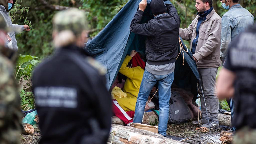 Afghanische Flüchtlinge bauen Zelte an der Grenze zwischen Polen und Belarus. Polens Opposition hat die Regierung zur sofortigen Hilfe für die festsitzende Gruppe aufgefordert. Es sei eine «skandalöse Situation», sagte der Abgeordnete Maciej Konieczny von der Linken dem Sender Polsat News. Foto: Attila Husejnow/SOPA Images via ZUMA Press Wire/dpa