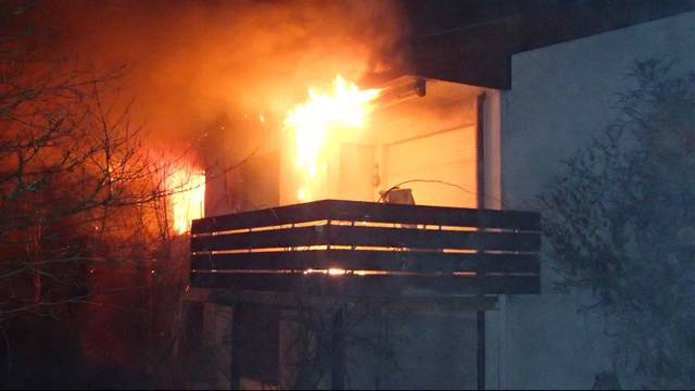 79-Jähriger bei Hausbrand in Kaiseraugst verletzt