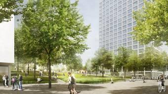 Auf dem Areal, auf dem sich derzeit vor allem Familiengärten und ein Parkplatz befinden, sind eine Schulanlage vorgesehen, ungefähr 700 gemeinnützige Wohnungen und 200 Alterswohnungen, Gewerbeflächen und ein Park. (Archiv)