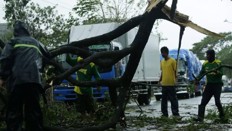 """Nördlich von Manila hat der Sturm """"Koppu"""" einen Baum auf die Strasse gefällt."""
