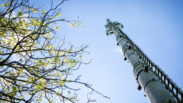 Ob die Antenne die bisher bekannten Bandbreiten 2, 3 oder 4G abdeckt oder gar das neue 5G, sei unerheblich, sagt der Fachmann (Symbolbild).