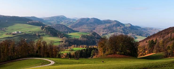 Von der Strihe blickt man bei klarer Sicht in nordwestlicher Richtung über das Benkental bis zu den Vogesen.