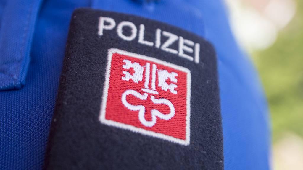 Abgestürzter Pudel in Beckenried NW gerettet