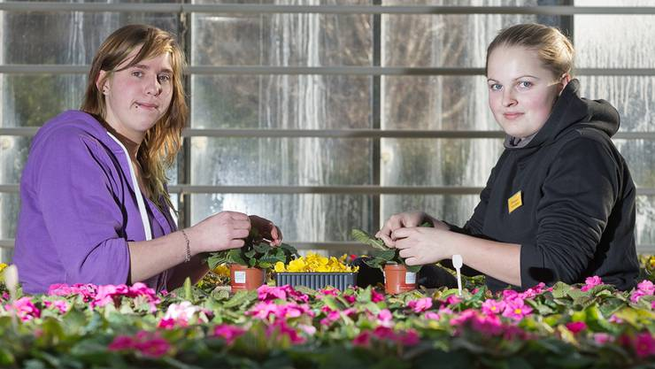 Primeliblüten bestäuben bringt die Schweizerin Ramona Bloch (links) ihrer deutschen Kollegin Jule Marie Weisener näher.emanuel freudiger