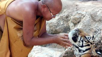 Thailands Mönche sind zu dick (Symbolbild)