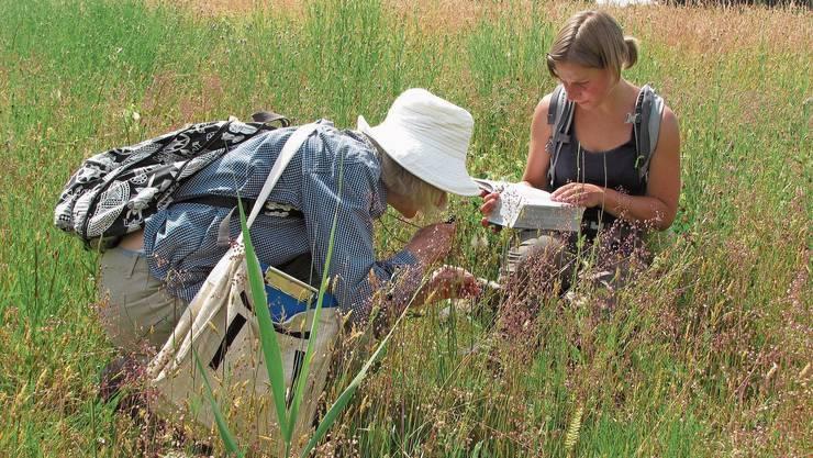 250 Fachleute und Laien haben am Bürgerwissenschaft-Projekt mitgewirkt.