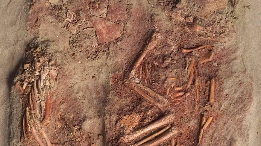 Die Kremser Steinzeit-Zwillinge - ein einzigartiger Fund, da sonst keine Zeugnisse von Säuglingsbestattungen aus der Zeit des frühen Homo sapiens existieren. Dank dem Umstand, dass die sterblichen Überreste mit einer Mammutschulter zugedeckt waren, gab es erstaunlich gutes Genmaterial. (zVg)