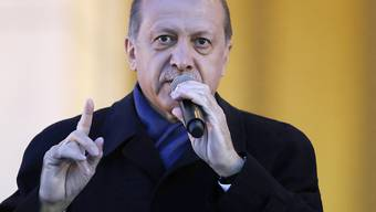 """Glaubt auch zu wissen, was für Deutsch-Türken die beste Wahl für den Bundestag ist: Präsident Recep Tayyip Erdogan rät seinen Landsleuten in Deutschland, nicht für """"türkeifeindliche"""" Parteien zu stimmen, also zum Beispiel nicht für CDU/CSU und SPD."""