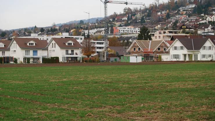 Umstritten: Im «Ättigüpf», unweit der Siedlungen «Im Güpf» und «Lindenpark», ist eine Baulandneueinzonung geplant. (Bild: sl)