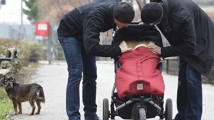 adoptionsvoraussetzungen