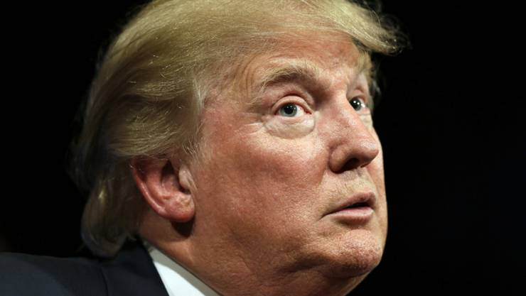 Hat unbefugt Neil Youngs Musik für seinen Wahlkampf missbraucht: Donald Trump (Archiv)