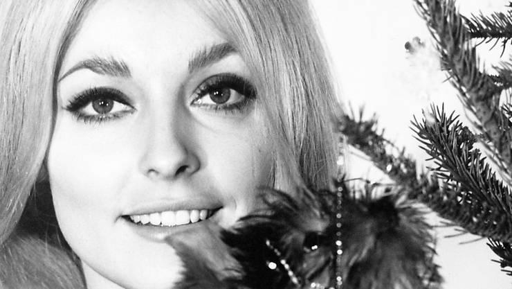 Gegenstände des 1960er-Stars Sharon Tate sollen im November versteigert werden. (Archivbild)