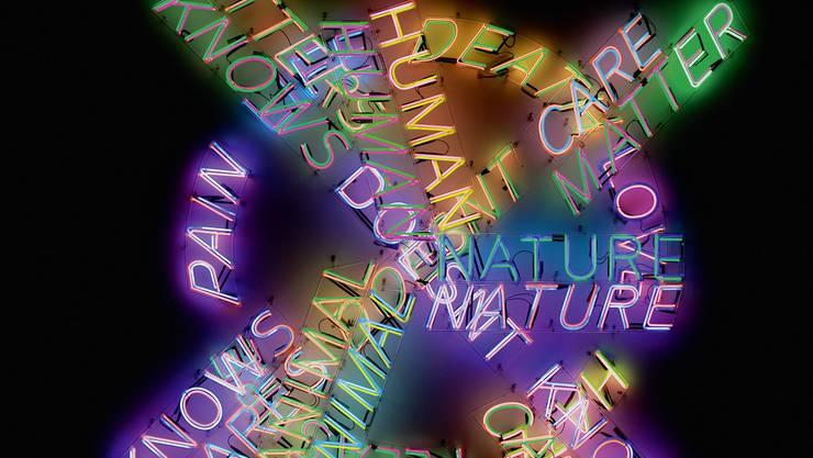 Bäm! Da habt ihr eure Kunst! Bruce Naumans «Human Nature / Life Death / Knows Doesn't Know».