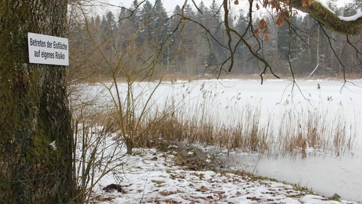 Fischbach-Göslikon Mösli im Winter