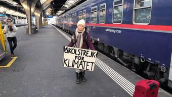 """Die schwedische Klima-Aktivistin Greta Thunberg hat's vorgemacht und reiste im Zug nach Davos statt im Flugzeug. Mittlerweile ist """"Flygskam"""" - """"Flugscham"""" - in Schweden voll im Trend."""