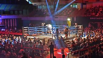 Fight Night 2017