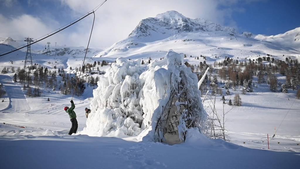 Gletscher-Retter im Einsatz: So könnten unsere Gletscher geschützt werden