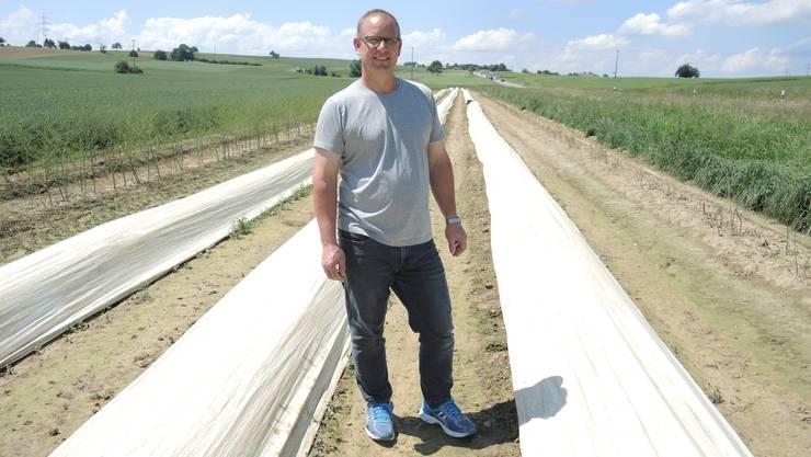 Roland Brogli vom Widmatthof auf seinem Spargelfeld, auf dem im Moment die weisse Seite der Plastikfolie oben liegt.