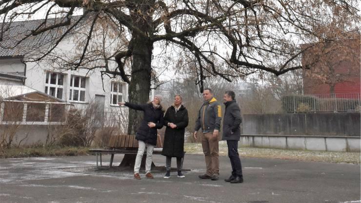 Mirjam Hegenbarth (Stiftung St. Josef), Ursula Lightowler (Christchindli-Märt), Stephan Troxler (Bremgarten Tourismus) und Thomas Bopp (Stiftung St. Josef, von links) freuen sich auf den Advent mit Eisfeld unter der Linde.