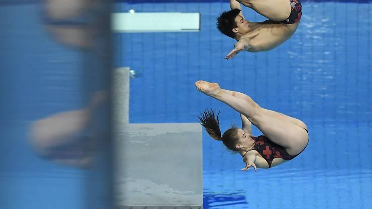 Medaille Wasserspringen Medaillen