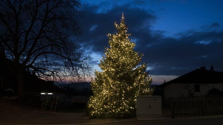 In Dietikon machen die Quartiervereine einen Weihnachtbaum-Wettbewerb. (Symbolbild)