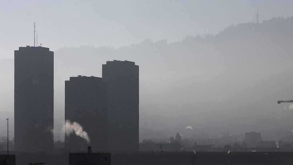 Ein französisches Gericht hat den französischen Staat für den Smog in Paris mitverantwortlich gemacht. Eine Frau und ihre Tochter, die wegen Atemwegproblemen geklagt hatten, bekamen Recht. Die Schadenersatzforderung der beiden wies das Gericht aber ab. (Symbolbild)
