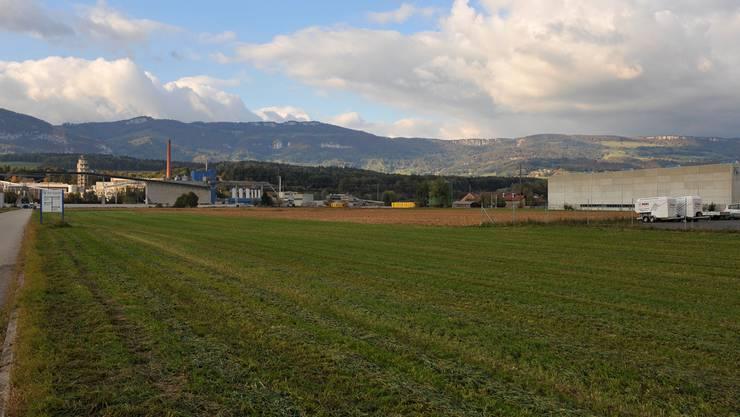 55 Hektaren Land, das für Industrie und Gewerbe geeignet wäre, liegen im «Attisholz Süd».