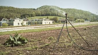 Der Ebenrain muss seine Felder bewässern