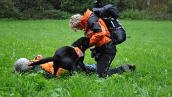 Hunde suchen nach vermissten Fallschirmspringer